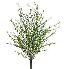 """Grass Berry Bush, 22"""""""