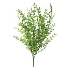 """22"""" Green Boxwood Bush"""