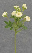 "Ranunculus (Mini) Flower Spray, 22""- Cream"