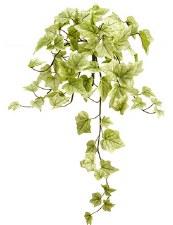 "Ivy Hanging Bush, 22""- Green/Cream"