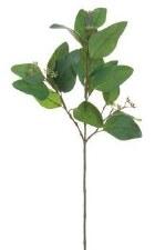 "Eucalyptus Leaf Spray, 24.5""- Green"