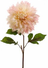 "Dahlia (Dinner Plate) Spray, 25.5""- Pink Cream"