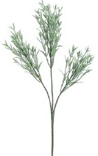 Rosemary Spray, 25""