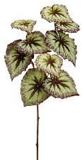 """Begonia Leaf Spray, 26""""- Green/Purple"""
