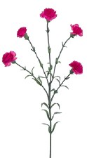 "Mini Carnation Spray, 27.5""- Fuchsia"