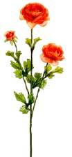 "Ranunculus Spray, 27""- Coral"