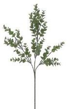 """Eucalyptus Spray, 27""""- Green/Gray"""