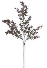"""Eucalpytus Spray, 27""""- Purple/Grey"""