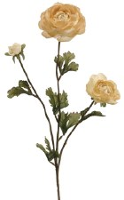 "Ranunculus Spray, 27""- Beige"