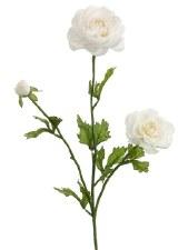 "Ranunculus Spray, 27""- Cream"
