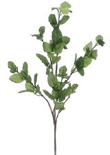 Mint Leaf Spray, 29""