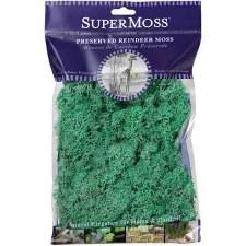 SuperMoss Reindeer Moss, 2oz- Mint