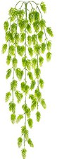 "Hops Hanging Bush, 30.5""- Bright Green"