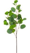 """Eucalyptus Spray, 31.5""""- Green"""