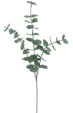 "Eucalyptus Spray, 31""- Green/Gray"