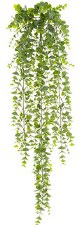 "Eucalyptus Hanging Bush, 32"""