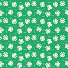 4H Bolted Fabric- Clovers