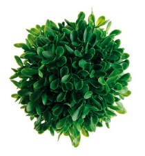 Boxwood Deco Ball, 4""