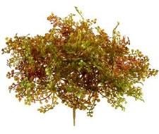 """Faux Moss Succulent Pick, 5"""""""