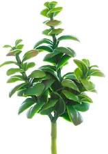 "Soft Jade Plant Pick, 6.5"""