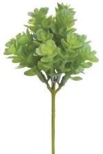"Soft Sedum Pick, 7.5""- Green/Gray"