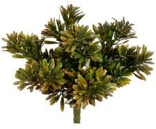 """Succulent Grass Bush, 9""""- Green/Brown"""