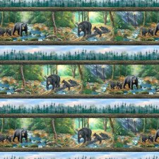 A New Adventure Bolted Fabric- Borders