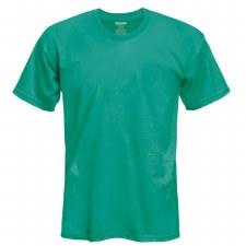 Adult T-Shirt- Antique Jade, Large