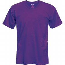Adult T-Shirt- Purple, Small