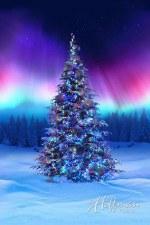 Christmas & Winter Fabric Panel- All Aglow Borealis