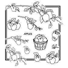 Aunt Martha's Iron On Transfers- Apple Galore