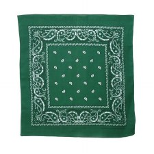 "Paisley Bandana 22""x22""""- Hunter Green"