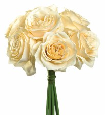 Ashley Rose Wedding Bouquet- Beige