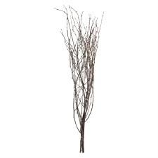 "36"" Birch Branch Bundle"