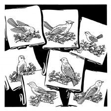 Aunt Martha's Iron On Transfers- Birds Galore #3534
