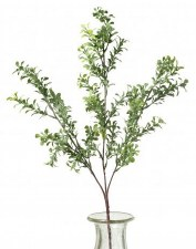 Boxwood Spray, 26""