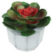 Faux Plastic Succulent
