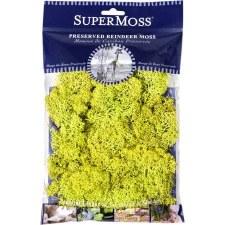 SuperMoss Reindeer Moss, 2oz- Chartreuse