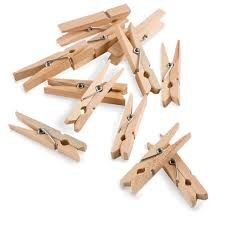 "1"" Mini Clothespins- 50ct"