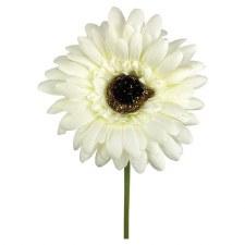 "18"" Gerbera Daisy Stem- Cream"