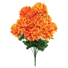Mum Bush- Orange