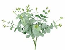 "Eucalyptus Bush, 19"""