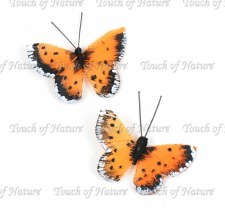 Touch of Nature Feather Mini Butterflies- Orange