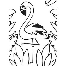 Darice Embossing Folder- Flamingo