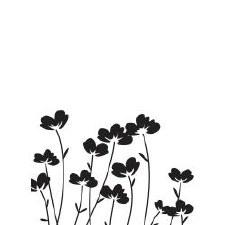 Darice Embossing Folder- Nature- Flowers