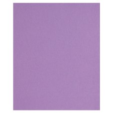 8.5x11 Purple Cardstock- Grapevine