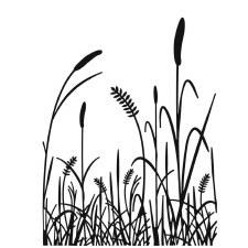 Darice Embossing Folder- Nature- Grass