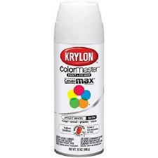 ColorMaster In/Out 12oz Gloss Spray Paint- Bright White