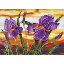 Diamond Facet Art Kit- Iris Sunset