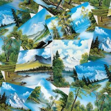 Joy of Painting Bolted Fabric- Pictures